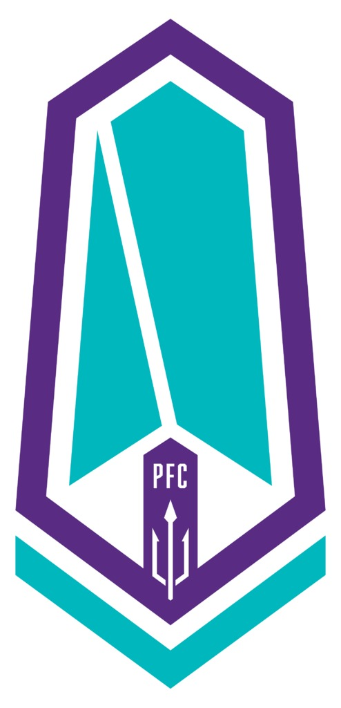 pfc_primary_mark_outlined