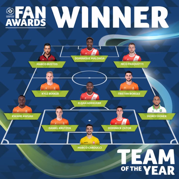 Web-TOTY-Winner copy